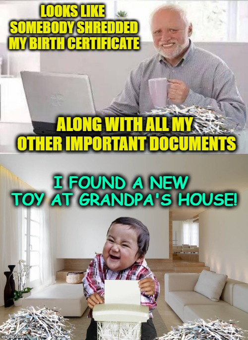 The Shredder  |  LOOKS LIKE SOMEBODY SHREDDED MY BIRTH CERTIFICATE; ALONG WITH ALL MY OTHER IMPORTANT DOCUMENTS; I FOUND A NEW TOY AT GRANDPA'S HOUSE! | image tagged in funny memes,hide the pain harold,evil toddler,papers,meme,harold | made w/ Imgflip meme maker