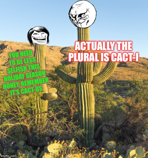 Grammar nazi cactus was never going to change. | YOU NEED TO BE LESS SELFISH THIS HOLIDAY SEASON HONEY, REMEMBER IT'S CACT-US ACTUALLY THE PLURAL IS CACT-I | image tagged in grammar nazi,plural,selfish | made w/ Imgflip meme maker