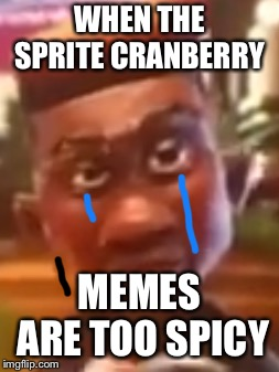 Sprite cranberry  | WHEN THE SPRITE CRANBERRY MEMES ARE TOO SPICY | image tagged in sprite | made w/ Imgflip meme maker