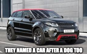THEY NAMED A CAR AFTER A DOG TOO | made w/ Imgflip meme maker