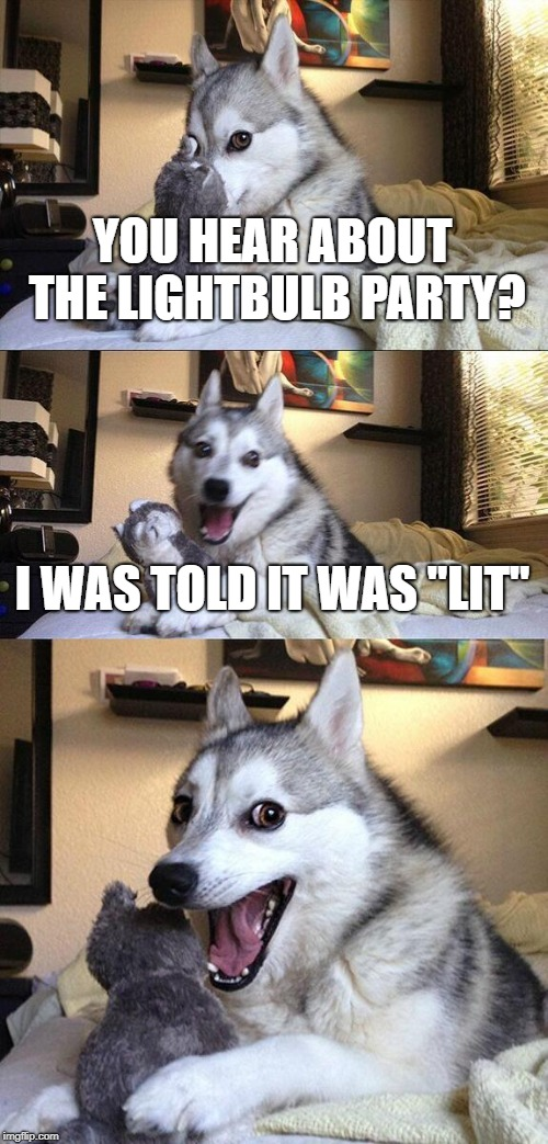 "Bad Pun Dog |  YOU HEAR ABOUT THE LIGHTBULB PARTY? I WAS TOLD IT WAS ""LIT"" 