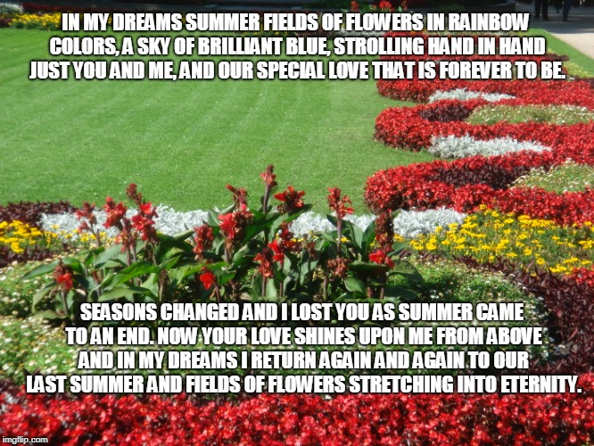 Dreaming Dreams | IN MY DREAMS SUMMER FIELDS OF FLOWERS IN RAINBOW COLORS, A SKY OF BRILLIANT BLUE, STROLLING HAND IN HAND JUST YOU AND ME, AND OUR SPECIAL LO | image tagged in summer,summer flowers,love,dreams | made w/ Imgflip meme maker