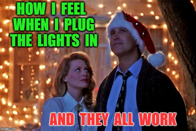 Christmas Vacation | HOW  I  FEEL  WHEN  I  PLUG  THE  LIGHTS  IN AND  THEY  ALL  WORK | image tagged in christmas vacation | made w/ Imgflip meme maker