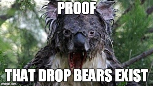 Angry Koala | PROOF THAT DROP BEARS EXIST | image tagged in memes,angry koala,meanwhile in australia,animal meme | made w/ Imgflip meme maker