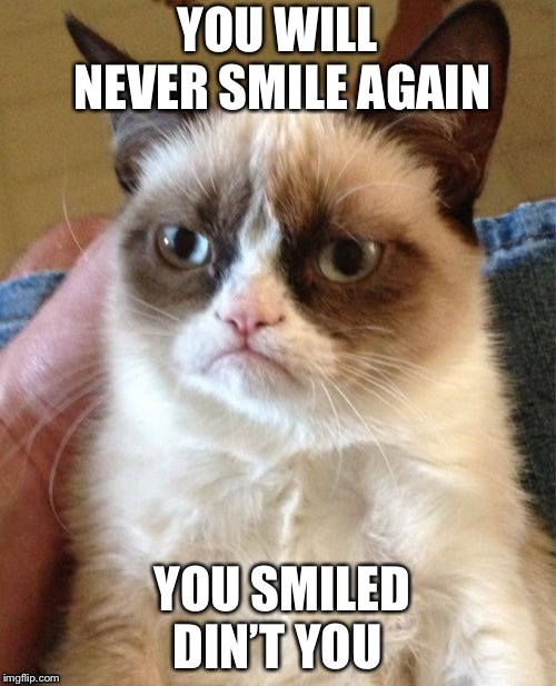 Grumpy Cat Meme | YOU WILL NEVER SMILE AGAIN YOU SMILED DIN'T YOU | image tagged in memes,grumpy cat | made w/ Imgflip meme maker