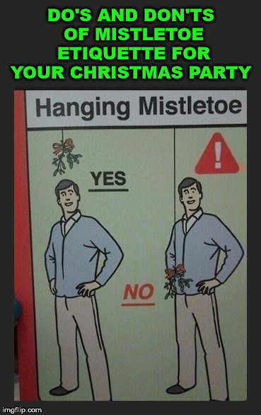 Also do not tie it to your belt buckle. | DO'S AND DON'TS OF MISTLETOE ETIQUETTE FOR YOUR CHRISTMAS PARTY | image tagged in memes,mistletoe,etiquette,funny,christmas memes,christmas | made w/ Imgflip meme maker