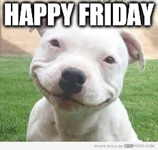 happy Friday  | HAPPY FRIDAY | image tagged in happy friday puppy,happy friday,friday,meme,memes,puppy | made w/ Imgflip meme maker