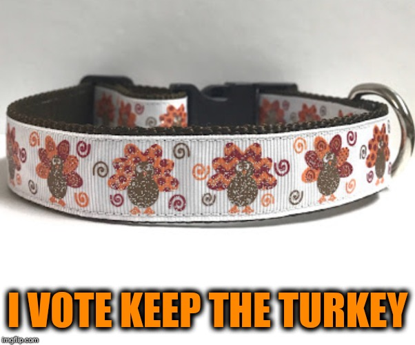 I VOTE KEEP THE TURKEY | made w/ Imgflip meme maker