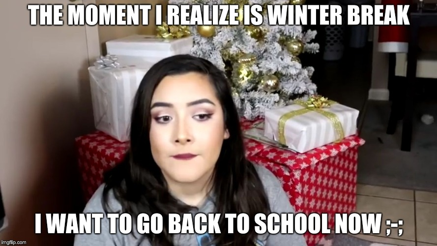 THE MOMENT I REALIZE IS WINTER BREAK I WANT TO GO BACK TO SCHOOL NOW ;-; | image tagged in the moment you realize | made w/ Imgflip meme maker