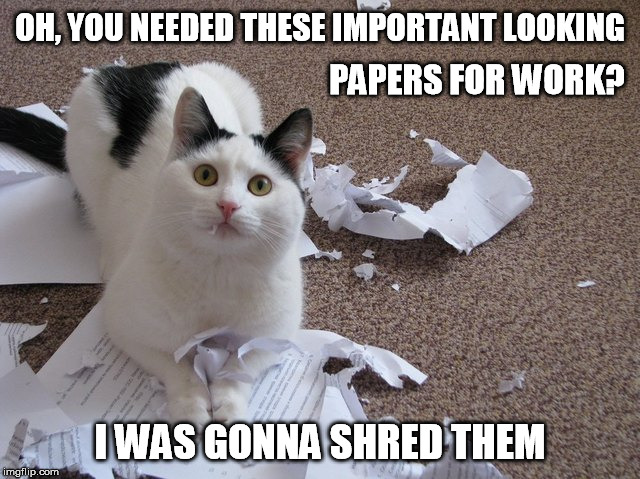 OH, YOU NEEDED THESE IMPORTANT LOOKING I WAS GONNA SHRED THEM PAPERS FOR WORK? | made w/ Imgflip meme maker