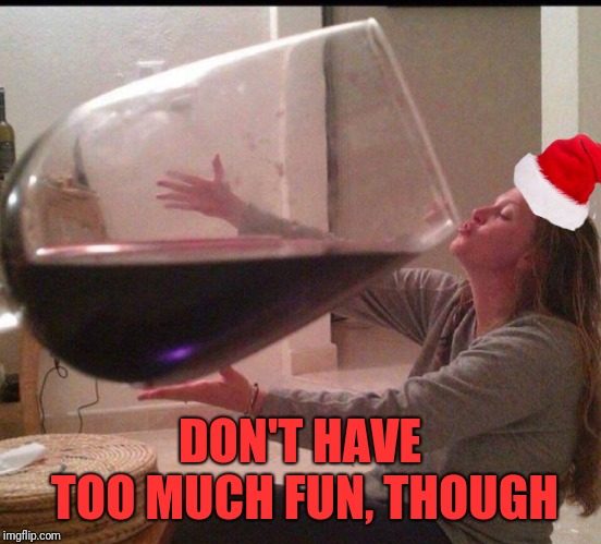 Big wine santa | DON'T HAVE TOO MUCH FUN, THOUGH | image tagged in big wine santa | made w/ Imgflip meme maker
