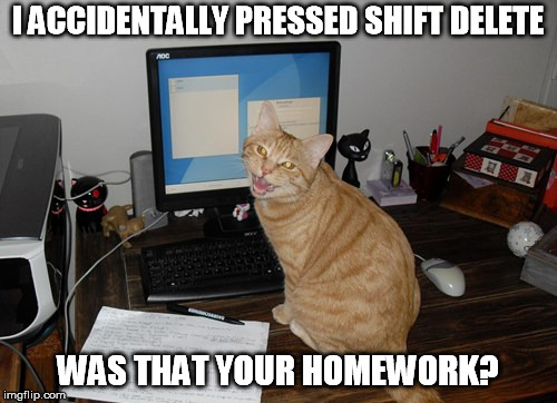 I ACCIDENTALLY PRESSED SHIFT DELETE WAS THAT YOUR HOMEWORK? | made w/ Imgflip meme maker