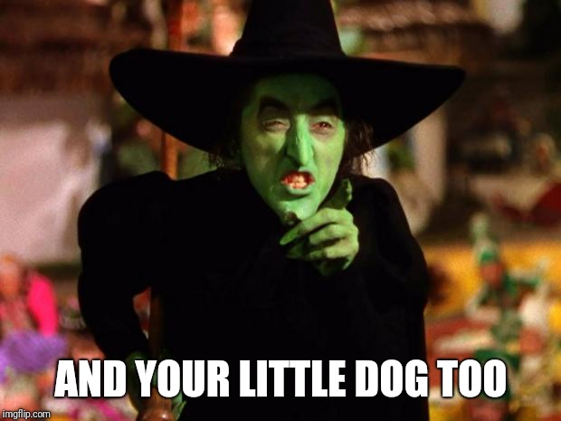 wicked witch  | AND YOUR LITTLE DOG TOO | image tagged in wicked witch | made w/ Imgflip meme maker