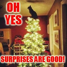 OH YES SURPRISES ARE GOOD! | made w/ Imgflip meme maker