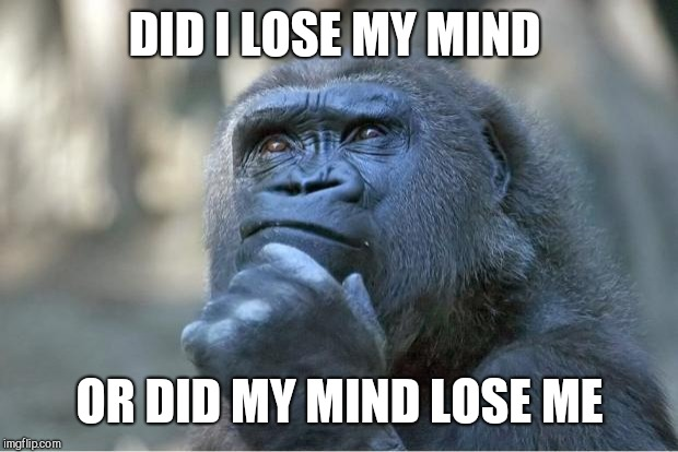 The thinking gorilla | DID I LOSE MY MIND OR DID MY MIND LOSE ME | image tagged in the thinking gorilla | made w/ Imgflip meme maker