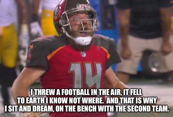 I threw a football... | I THREW A FOOTBALL IN THE AIR, IT FELL TO EARTH I KNOW NOT WHERE.  AND THAT IS WHY I SIT AND DREAM, ON THE BENCH WITH THE SECOND TEAM. | image tagged in football freakout | made w/ Imgflip meme maker