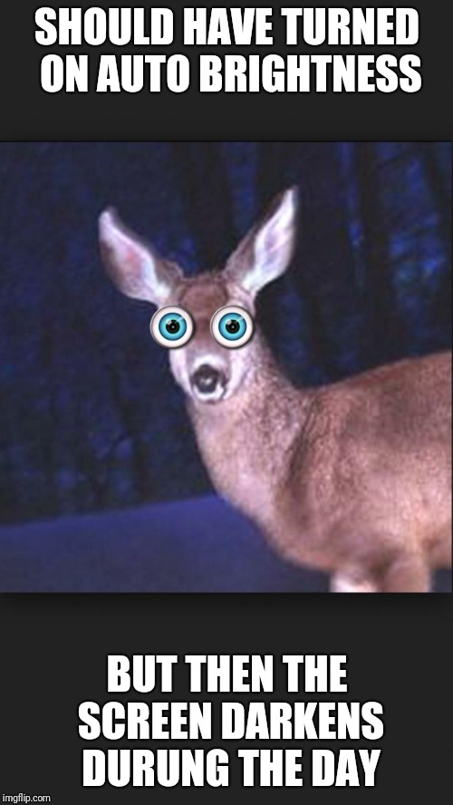 deer in headlights | SHOULD HAVE TURNED ON AUTO BRIGHTNESS BUT THEN THE SCREEN DARKENS DURUNG THE DAY | image tagged in deer in headlights | made w/ Imgflip meme maker