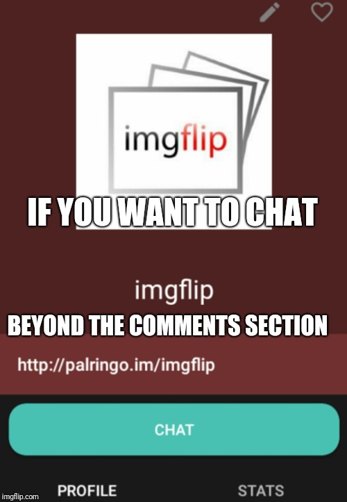 PalRingo | IF YOU WANT TO CHAT BEYOND THE COMMENTS SECTION | image tagged in palringo | made w/ Imgflip meme maker