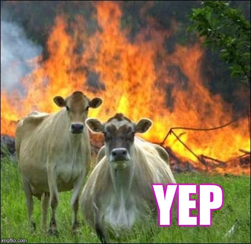 Evil Cows Meme | YEP | image tagged in memes,evil cows | made w/ Imgflip meme maker