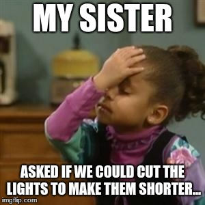Olivia | MY SISTER ASKED IF WE COULD CUT THE LIGHTS TO MAKE THEM SHORTER... | image tagged in olivia | made w/ Imgflip meme maker