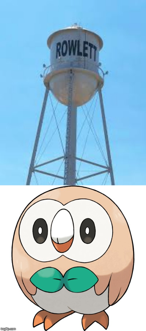 There's city in Texas called Rowlett | image tagged in city,rowlet,pokemon,texas,pokemon sun and moon | made w/ Imgflip meme maker