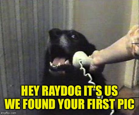 Yes this is dog | HEY RAYDOG IT'S US WE FOUND YOUR FIRST PIC | image tagged in yes this is dog | made w/ Imgflip meme maker
