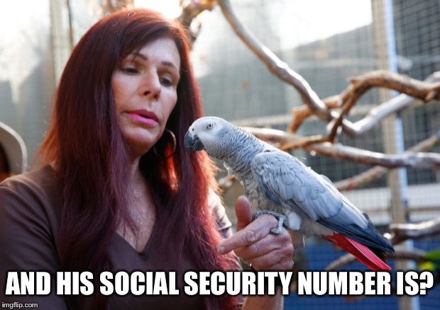 AND HIS SOCIAL SECURITY NUMBER IS? | made w/ Imgflip meme maker