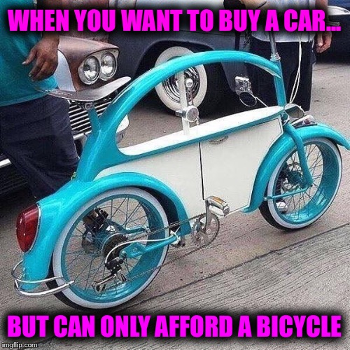 When you're too poor to buy a car... but rich enough to get a custom bike | WHEN YOU WANT TO BUY A CAR... BUT CAN ONLY AFFORD A BICYCLE | image tagged in bike,vw,poor,rich,custom | made w/ Imgflip meme maker