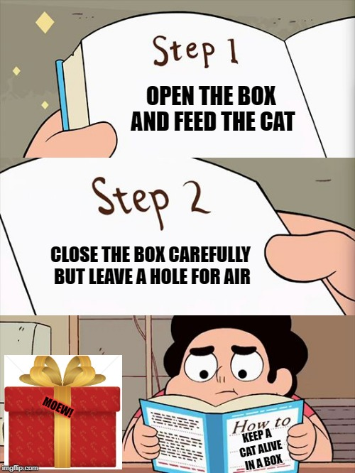 OPEN THE BOX AND FEED THE CAT CLOSE THE BOX CAREFULLY BUT LEAVE A HOLE FOR AIR KEEP A CAT ALIVE IN A BOX MOEW! | image tagged in steven's rule book | made w/ Imgflip meme maker