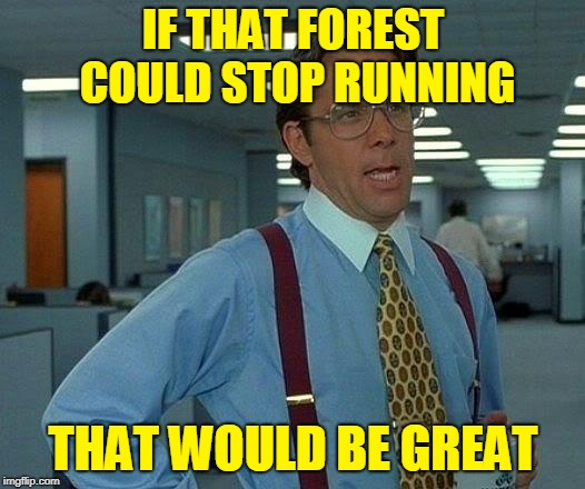 That Would Be Great Meme If That Forest Could Stop Running That Would Be Great