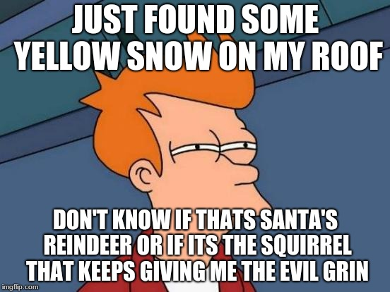 Futurama Fry Meme |  JUST FOUND SOME YELLOW SNOW ON MY ROOF; DON'T KNOW IF THATS SANTA'S REINDEER OR IF ITS THE SQUIRREL THAT KEEPS GIVING ME THE EVIL GRIN | image tagged in memes,futurama fry | made w/ Imgflip meme maker