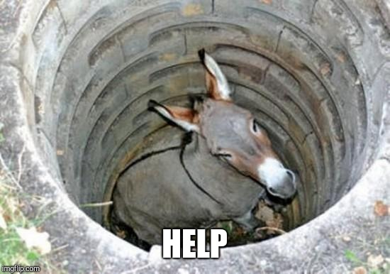 ass hole | HELP | image tagged in ass hole | made w/ Imgflip meme maker