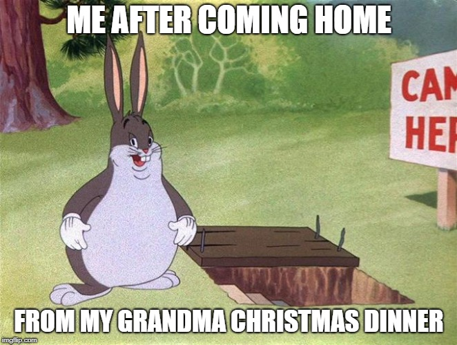 Big Chungus | ME AFTER COMING HOME FROM MY GRANDMA CHRISTMAS DINNER | image tagged in big chungus | made w/ Imgflip meme maker