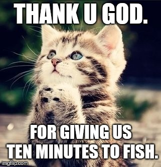 Praying Cat | THANK U GOD. FOR GIVING US TEN MINUTES TO FISH. | image tagged in praying cat | made w/ Imgflip meme maker