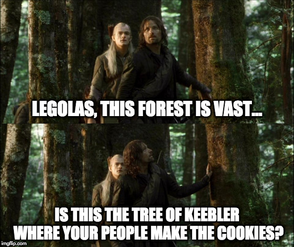 keebler elf | LEGOLAS, THIS FOREST IS VAST... IS THIS THE TREE OF KEEBLER WHERE YOUR PEOPLE MAKE THE COOKIES? | image tagged in lord of the rings | made w/ Imgflip meme maker
