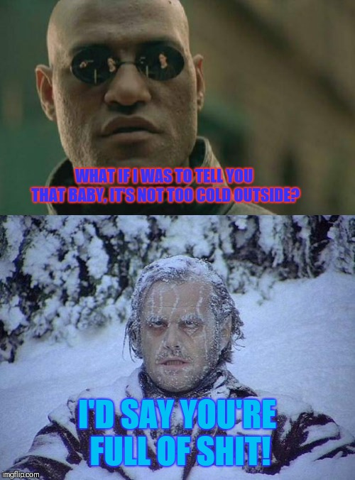 WHAT IF I WAS TO TELL YOU THAT BABY, IT'S NOT TOO COLD OUTSIDE? I'D SAY YOU'RE FULL OF SHIT! | image tagged in memes,matrix morpheus,jack nicholson the shining snow | made w/ Imgflip meme maker