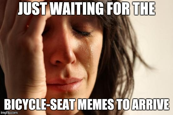 First World Problems Meme | JUST WAITING FOR THE BICYCLE-SEAT MEMES TO ARRIVE | image tagged in memes,first world problems | made w/ Imgflip meme maker