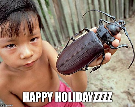Ugly bug week by Heavencanwait! Guess he couldn't wait well I could!  | HAPPY HOLIDAYZZZZ | image tagged in bugs,ugly,memes,funny,heavencanwait | made w/ Imgflip meme maker