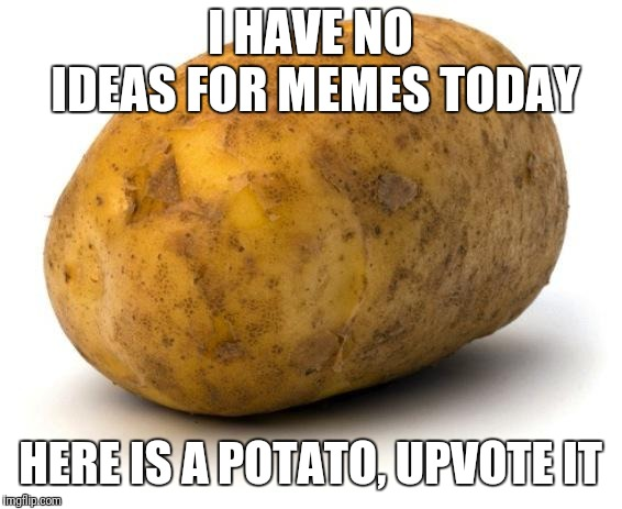 Some days it's like this, but I've submitted worse and gotten better | I HAVE NO IDEAS FOR MEMES TODAY HERE IS A POTATO, UPVOTE IT | image tagged in i am a potato,brain fart,i have no idea what i am doing,duh | made w/ Imgflip meme maker