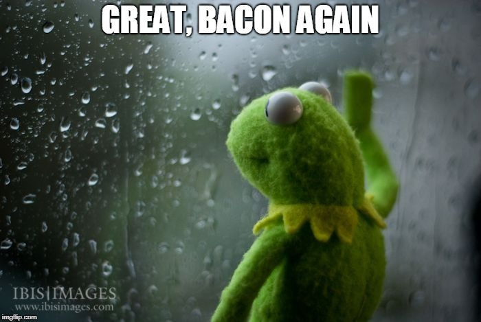 kermit window | GREAT, BACON AGAIN | image tagged in kermit window | made w/ Imgflip meme maker