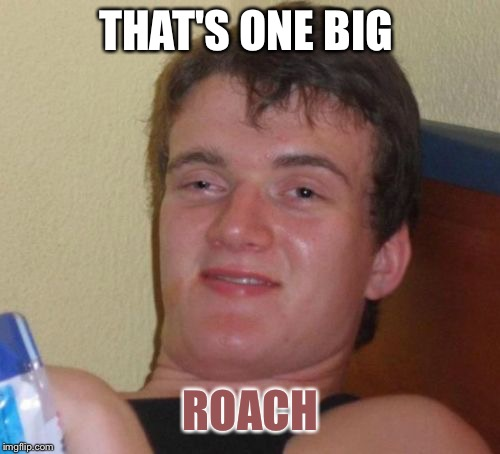 10 Guy Meme | THAT'S ONE BIG ROACH | image tagged in memes,10 guy | made w/ Imgflip meme maker