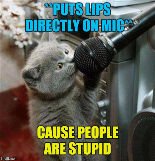 Cat microphone | **PUTS LIPS DIRECTLY ON MIC** CAUSE PEOPLE ARE STUPID | image tagged in cat microphone | made w/ Imgflip meme maker