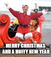 Merry Christmas and a Hoffy New Year | image tagged in christmas,david hasselhoff | made w/ Imgflip meme maker