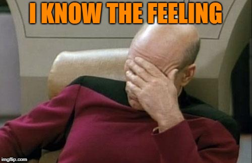 Captain Picard Facepalm Meme | I KNOW THE FEELING | image tagged in memes,captain picard facepalm | made w/ Imgflip meme maker