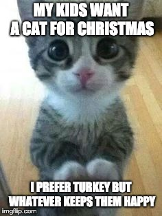 Cat for Christmas | MY KIDS WANT A CAT FOR CHRISTMAS I PREFER TURKEY BUT WHATEVER KEEPS THEM HAPPY | image tagged in kitten big eyes,turkey,christmas,christmas dinner | made w/ Imgflip meme maker