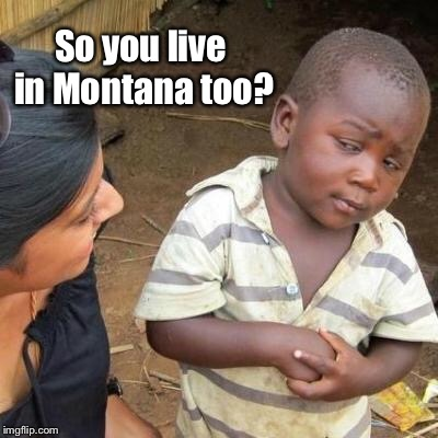 So You're Telling Me | So you live in Montana too? | image tagged in so you're telling me | made w/ Imgflip meme maker