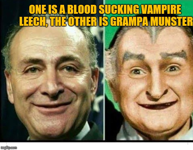 Schumer |  ONE IS A BLOOD SUCKING VAMPIRE LEECH, THE OTHER IS GRAMPA MUNSTER | image tagged in schumer | made w/ Imgflip meme maker