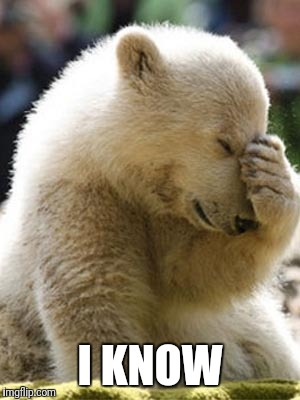 Facepalm Bear Meme | I KNOW | image tagged in memes,facepalm bear | made w/ Imgflip meme maker