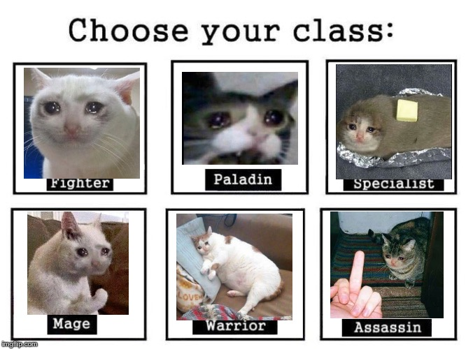 Choose your sad cat | image tagged in choose your fighter,sad cat | made w/ Imgflip meme maker