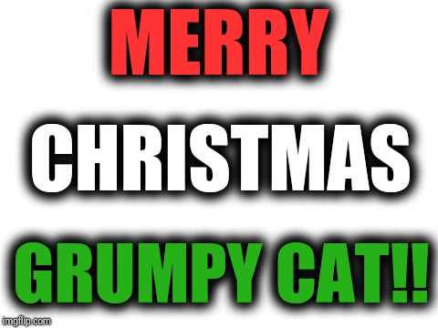 blank white template | MERRY GRUMPY CAT!! CHRISTMAS | image tagged in blank white template | made w/ Imgflip meme maker